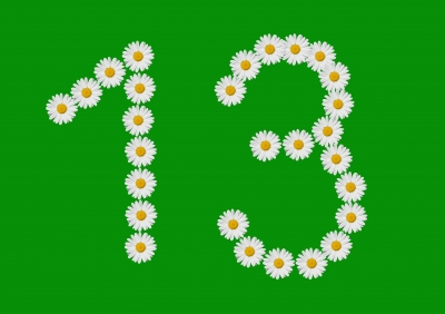"""Number 13 Made In Daisy Flower"" by dan"