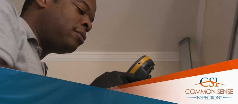Your-Los-Angeles-Real-Estate-Mold-Inspections