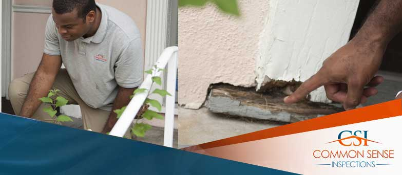 Your-Los-Angeles-Post-Remediation-Experts